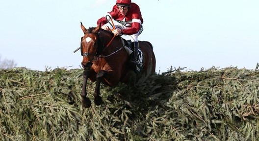 Tiger Roll Grand National Betting 1024X640