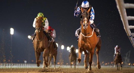 dubai-world-cup.jpg